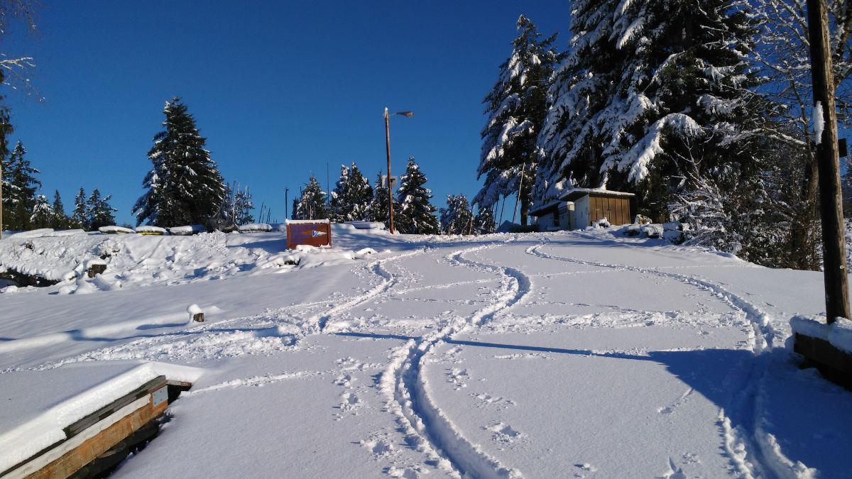 skiing VLSC in          Jan 2017